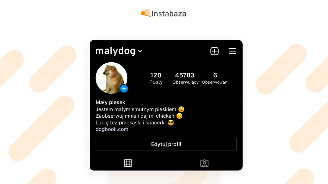 Edycja BIO na Instagramie